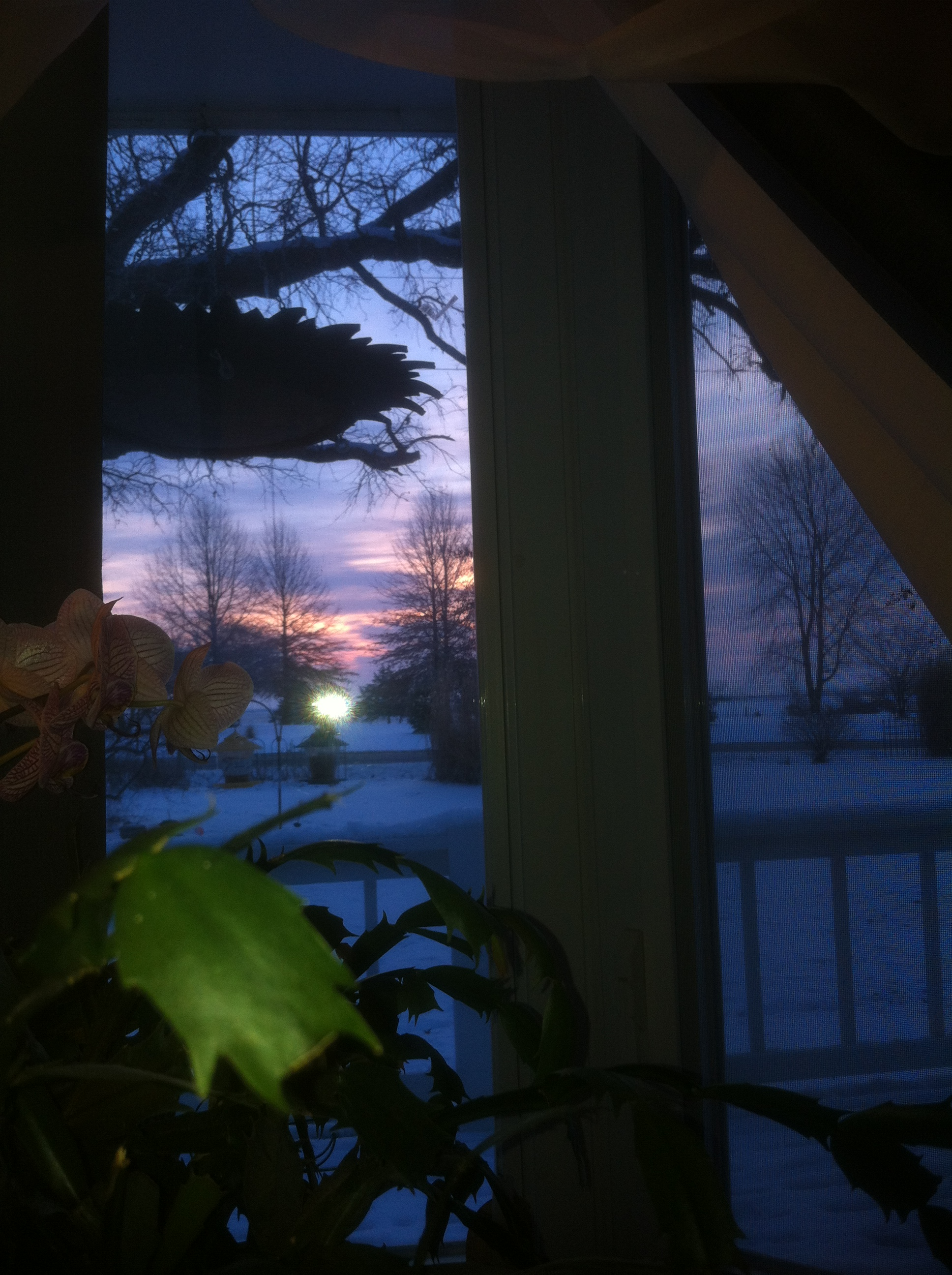 snow sunrise